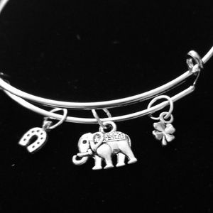 Goodluck Elephant Silver Charm Slide Bracelet
